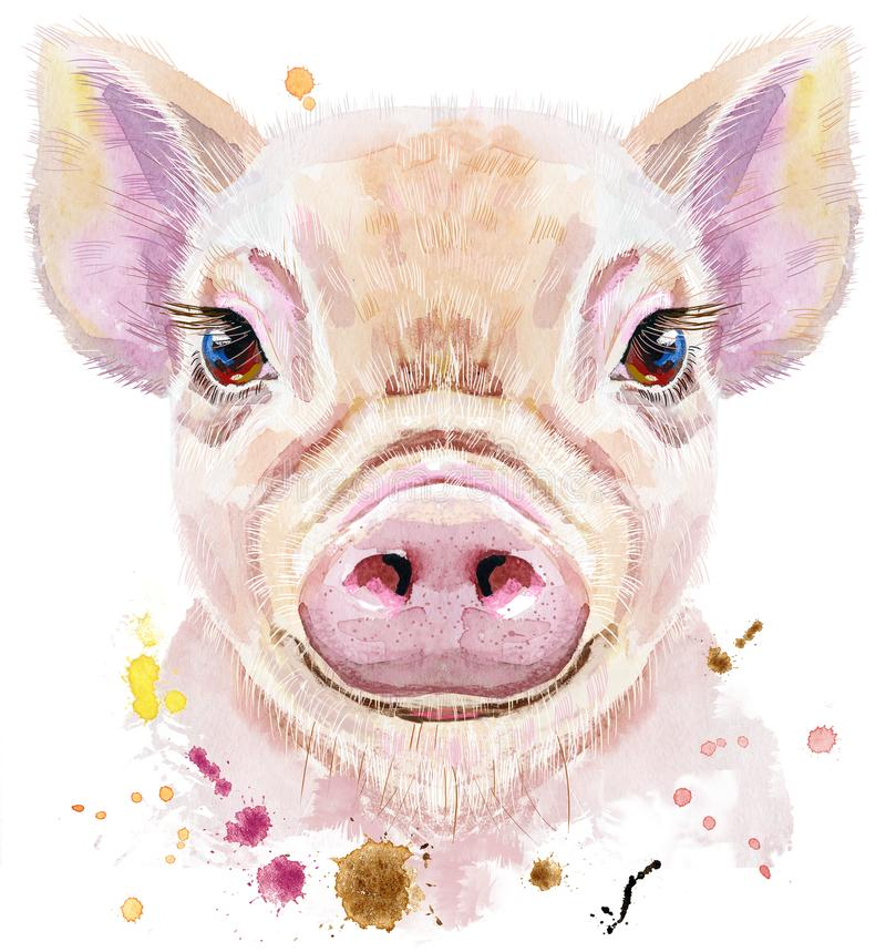 Retrato da aquarela do mini porco ilustração do vetor