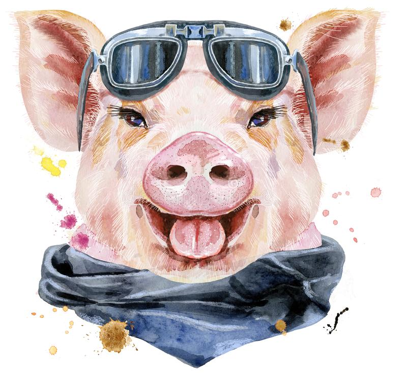 Retrato da aquarela do porco com óculos de sol do motociclista ilustração do vetor