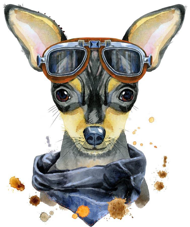 Retrato da aquarela do terrier de brinquedo com óculos de sol do motociclista ilustração stock