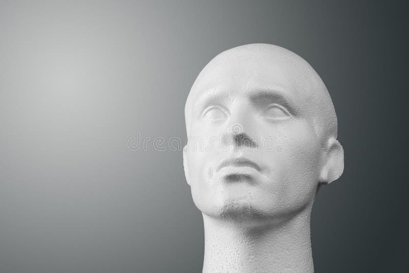 Retrato da cabeça do Mannequin do poliestireno fotografia de stock