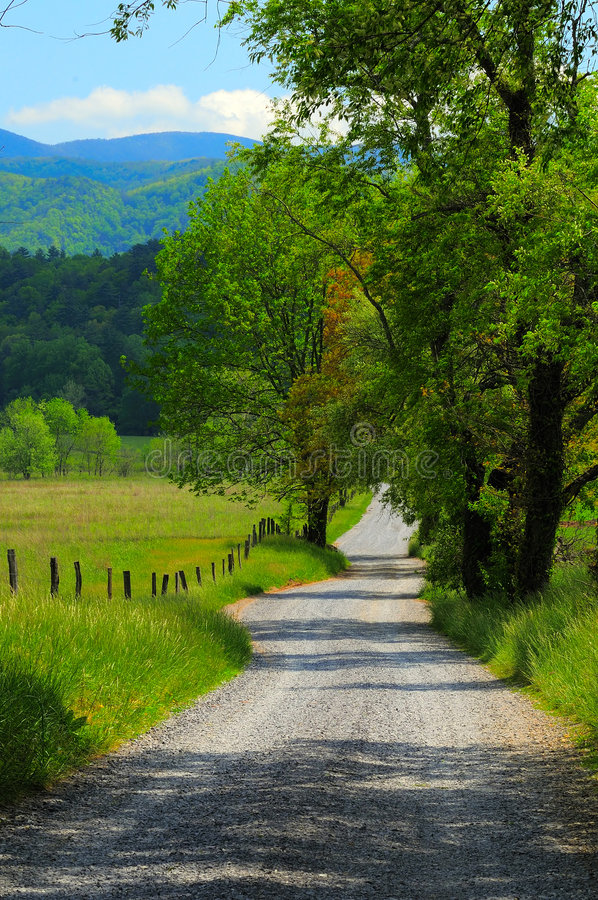Retrato da estrada secundária fotografia de stock