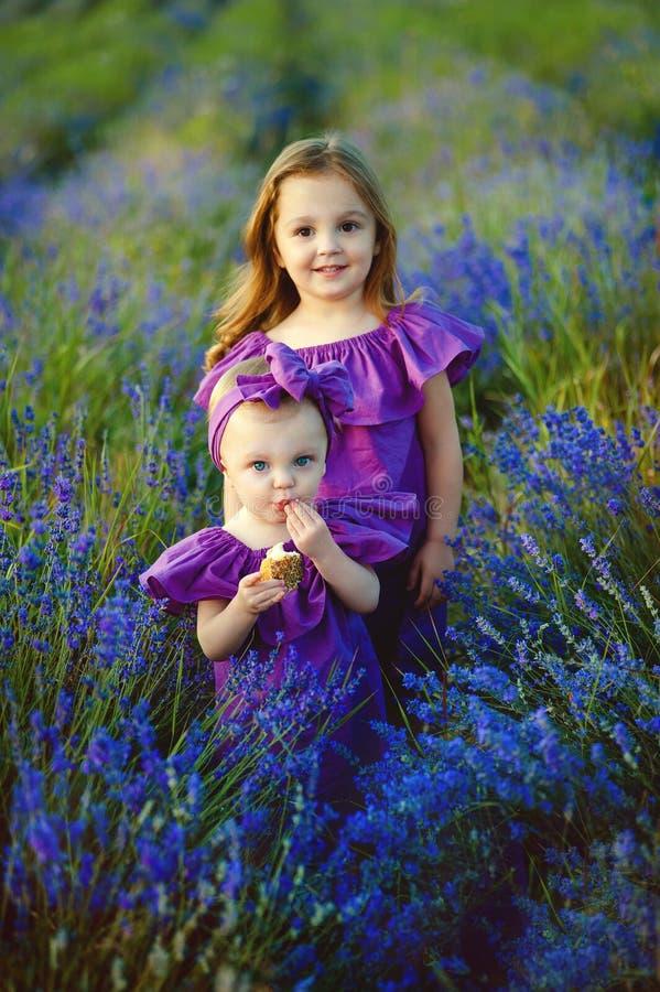 Retrato da família no campo da alfazema, duas irmãs junto que têm o divertimento foto de stock