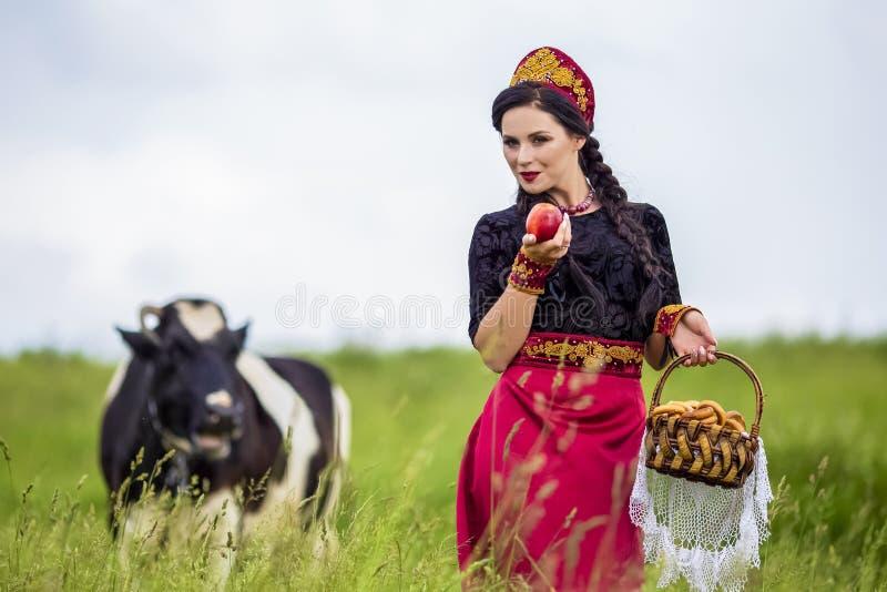 Retrato da forma da morena caucasiano sensual no russo Kokoshnik com a cesta de anéis do pão Levantamento contra a vaca no campo foto de stock