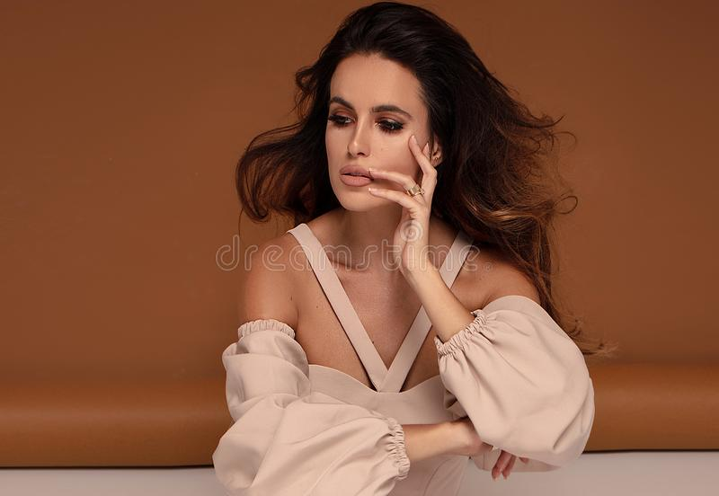 Retrato da forma da mulher triguenha foto de stock royalty free