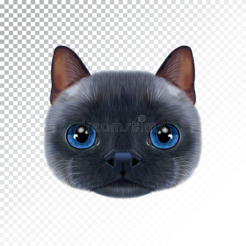 Retrato da ilustração do vetor do gato tailandês ilustração royalty free