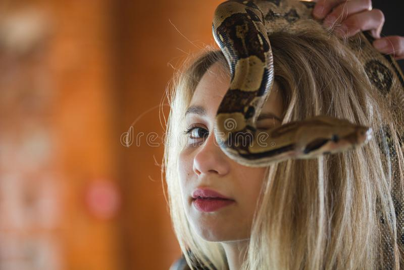 Retrato da jovem mulher bonita com um pitão na cara foto de stock royalty free