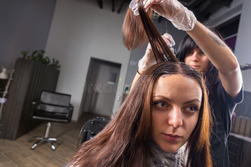 Retrato da jovem mulher bonita durante o processo de tingir seu h imagem de stock royalty free
