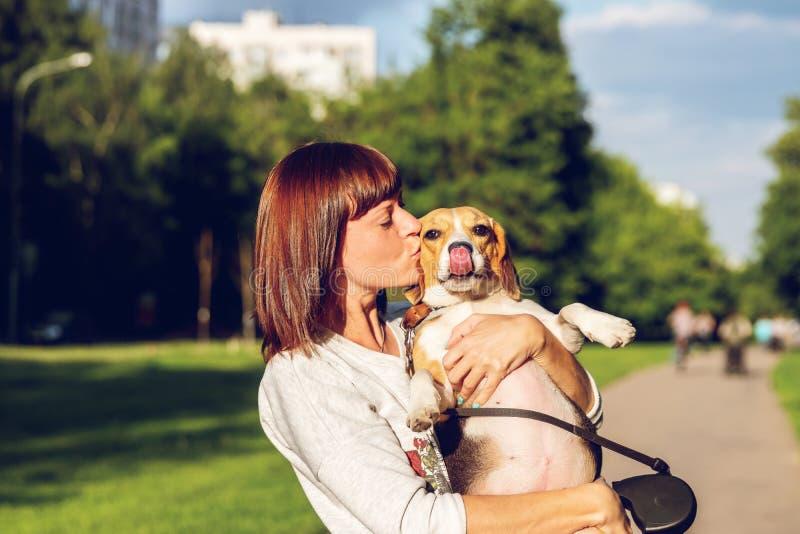 Retrato da jovem mulher que beija seu cão bonito do lebreiro Amor, feliz, beijando o cachorrinho imagens de stock