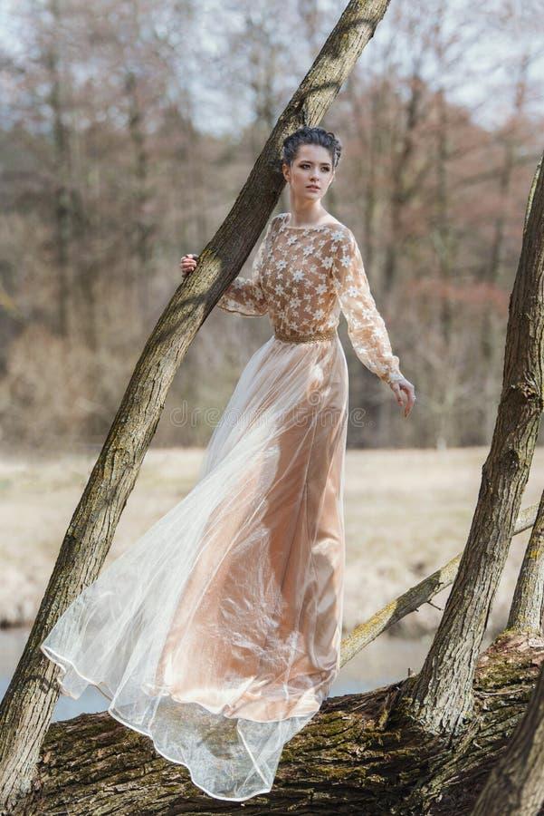 Retrato da jovem mulher sensual que veste o vestido elegante em uma floresta conífera imagens de stock royalty free
