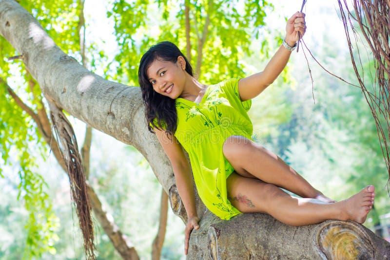 Retrato da menina asiática bonita nova que senta-se na árvore de banyan que sorri na câmera e que guarda um ramo imagem de stock royalty free