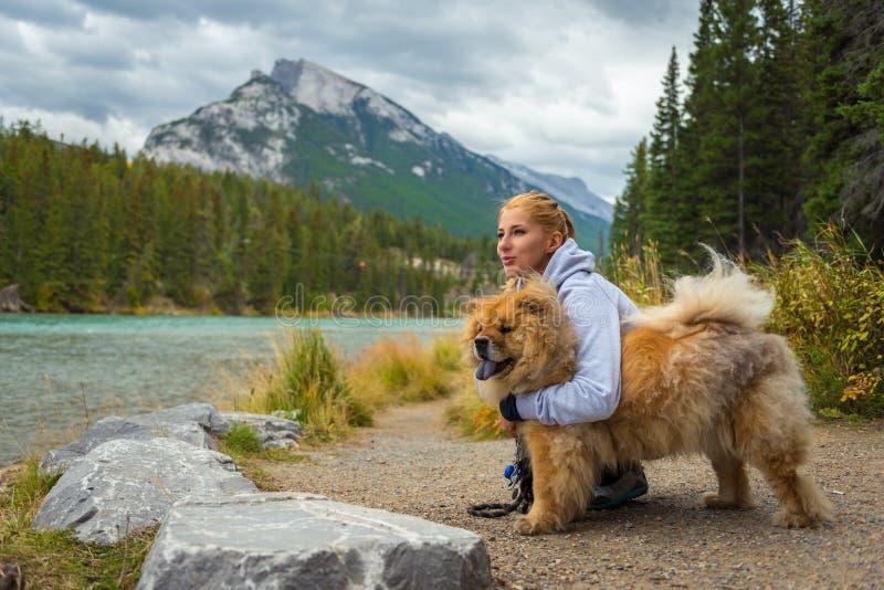 Retrato da menina bonita com cão da comida-comida foto de stock