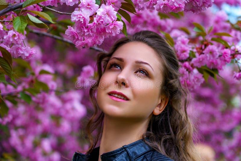 Retrato da menina bonita em flores cor-de-rosa de florescência de sakura no jardim imagem de stock royalty free