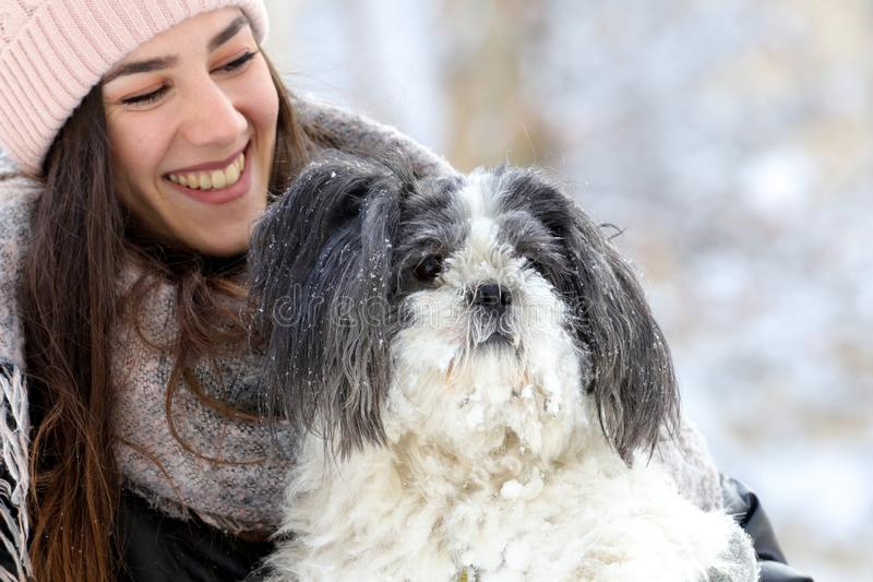 Retrato da menina de sorriso e do cão bonito do shih-tzu foto de stock