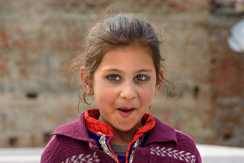 Retrato da menina indiana nova na vila ambarina Rajasthan India foto de stock