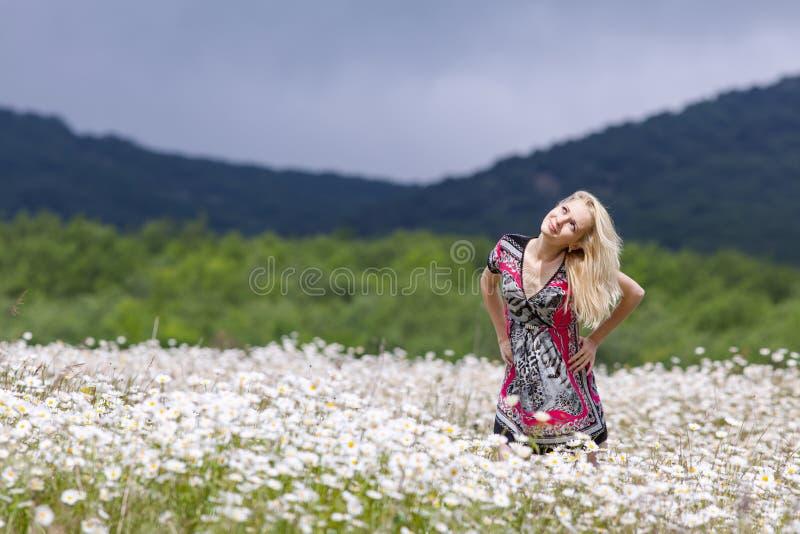 Retrato da menina magro no vestido leve no campo da camomila fotos de stock