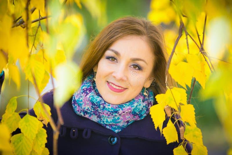 Retrato da menina na folha amarela das árvores foto de stock