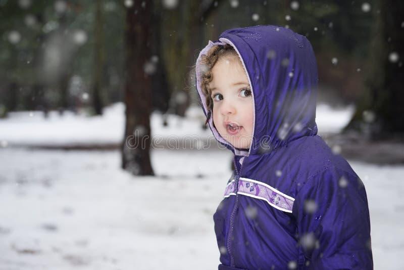 Retrato da menina na neve no inverno imagem de stock royalty free