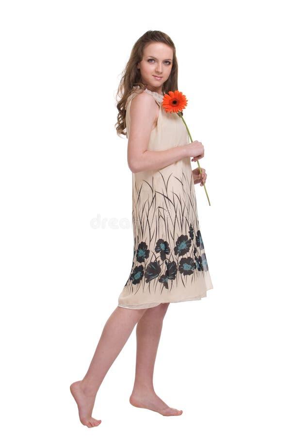 Download Retrato Da Mulher Bonita Nova Com Flor Foto de Stock - Imagem de aster, atrativo: 12804798