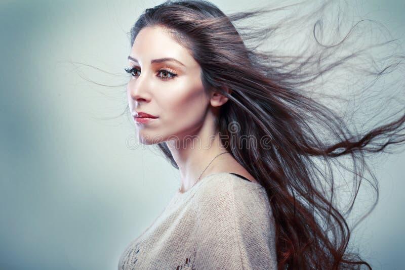 Retrato da mulher com cabelo longo imagem de stock