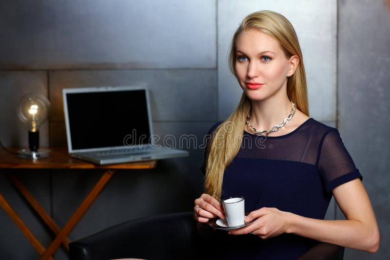 Retrato da mulher de negócios nórdica imagem de stock royalty free