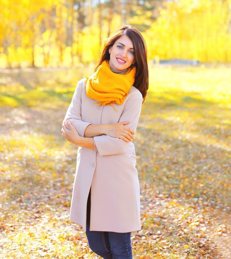 Retrato da mulher de sorriso bonita no outono ensolarado imagem de stock