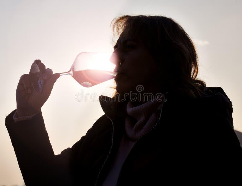 Retrato da mulher da degustação de vinhos Imagem da cor fotografia de stock