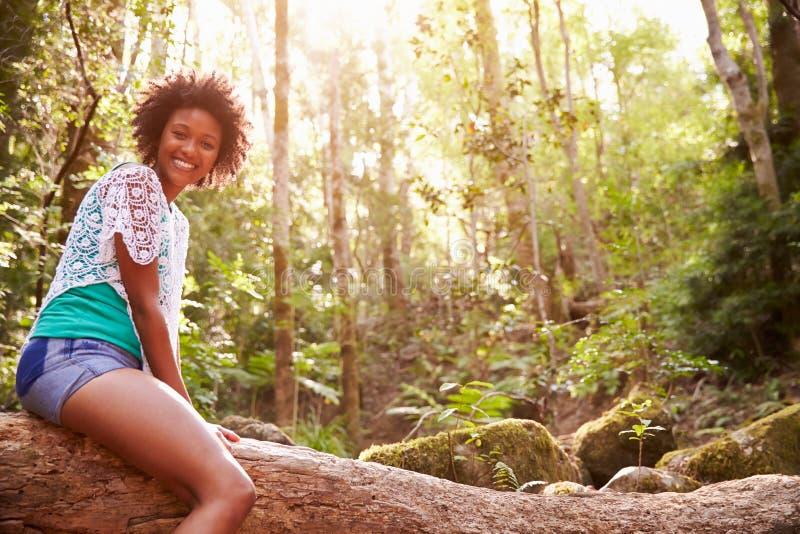 Retrato da mulher que senta-se no tronco de árvore na floresta imagens de stock