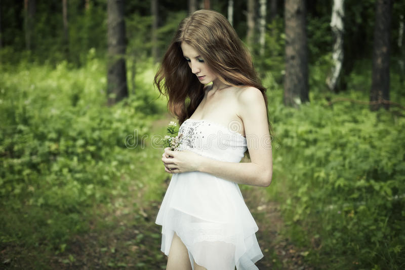Retrato da mulher romântica na floresta feericamente imagens de stock