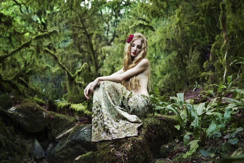 Retrato da mulher romântica na floresta feericamente imagem de stock