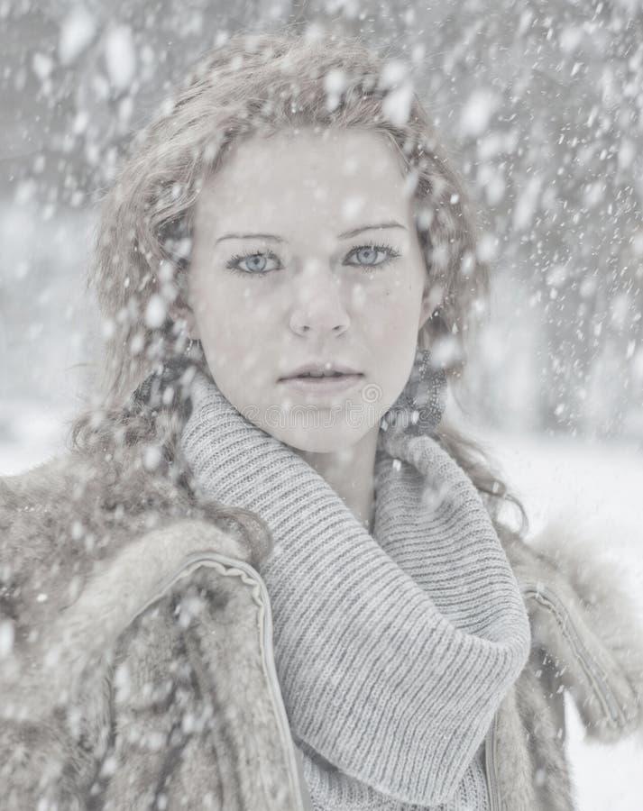 Retrato da neve imagem de stock