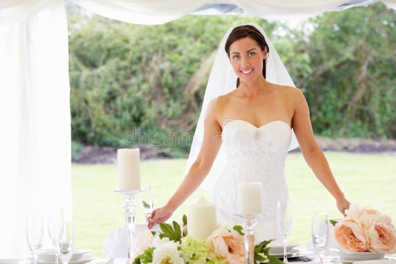Retrato da noiva no famoso na recepção fotografia de stock