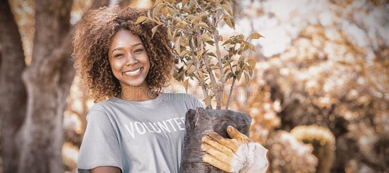 Retrato da planta fêmea da terra arrendada do voluntário imagens de stock
