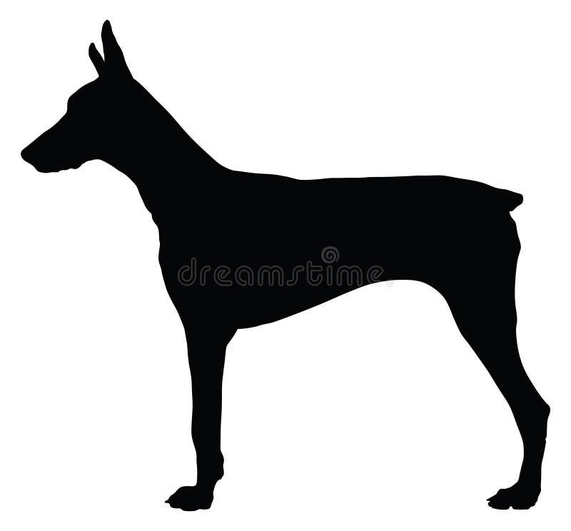 Retrato da silhueta do cão de Pincher do Doberman ilustração royalty free