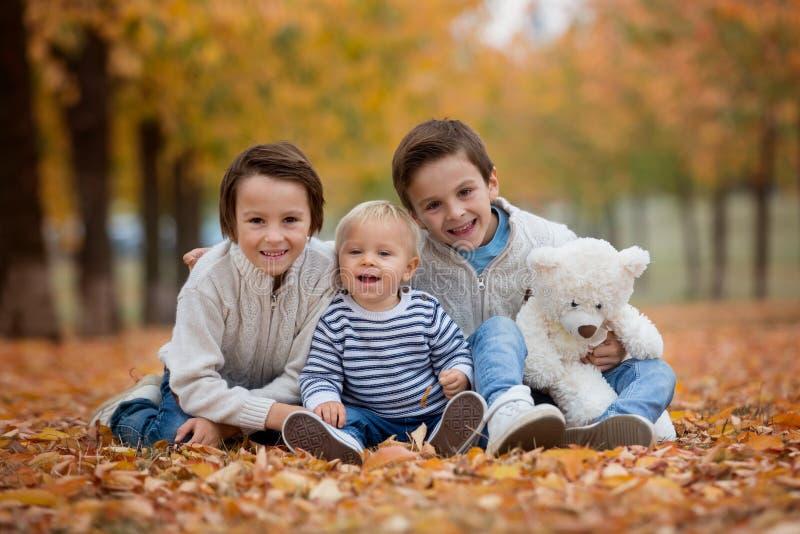 Retrato das crianças adoráveis, irmãos, no parque do outono, jogando imagens de stock