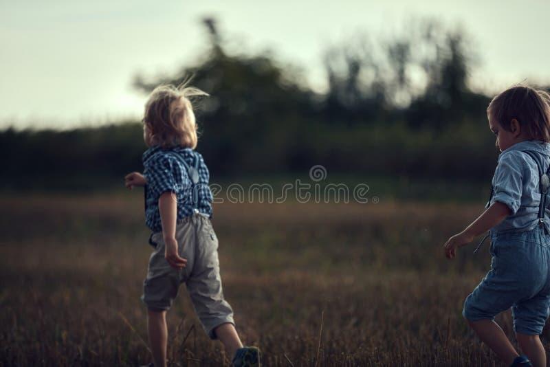 Retrato de alegres hermanos jugando en un campo de maíz fotos de archivo