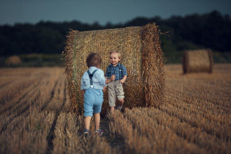 Retrato de alegres hermanos jugando en un campo de maíz imágenes de archivo libres de regalías