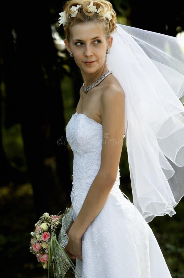 Retrato de casamento foto de stock royalty free