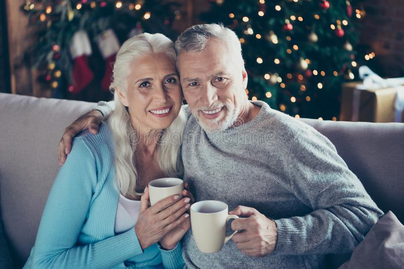 Retrato de dois bonitos alegres idosos doces adoráveis bonitos fotos de stock royalty free