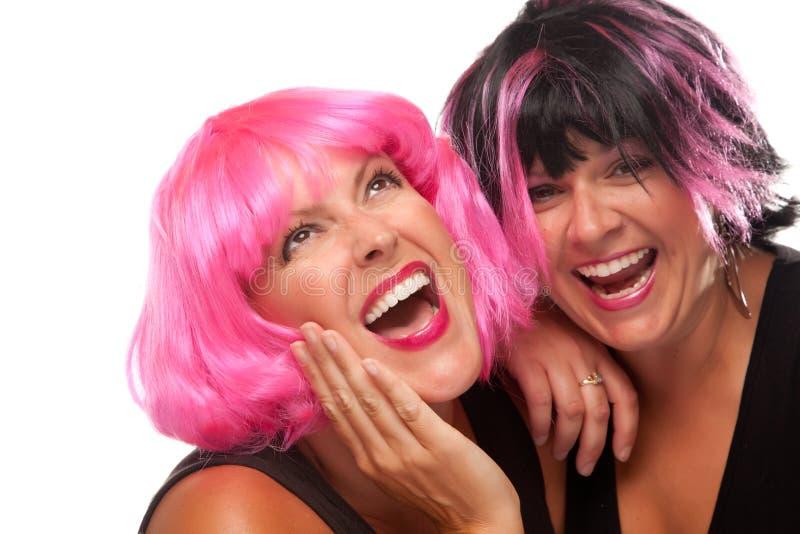 Retrato de dois cor-de-rosa e de meninas de cabelo pretas foto de stock royalty free