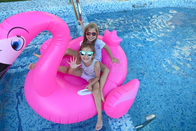 Retrato de dos muchachas que llevan las gafas de sol, amigos felices en el flotador inflable de la nadada del flamenco fotografía de archivo
