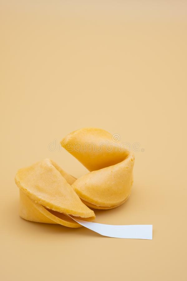 Retrato de duas cookies de fortuna fotografia de stock royalty free