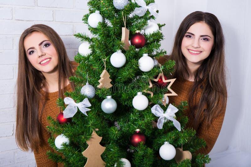 Retrato de duas jovens mulheres felizes com a árvore de Natal decorada imagem de stock royalty free