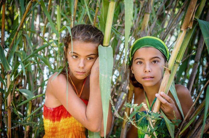 Retrato de duas meninas bonitas nos arbustos imagens de stock royalty free