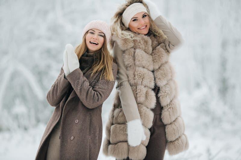 Retrato de duas mulheres louras felizes no chapéu na caminhada na floresta do inverno foto de stock royalty free