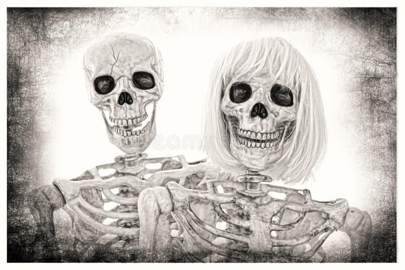 Retrato de esqueleto dos pares fotografia de stock royalty free