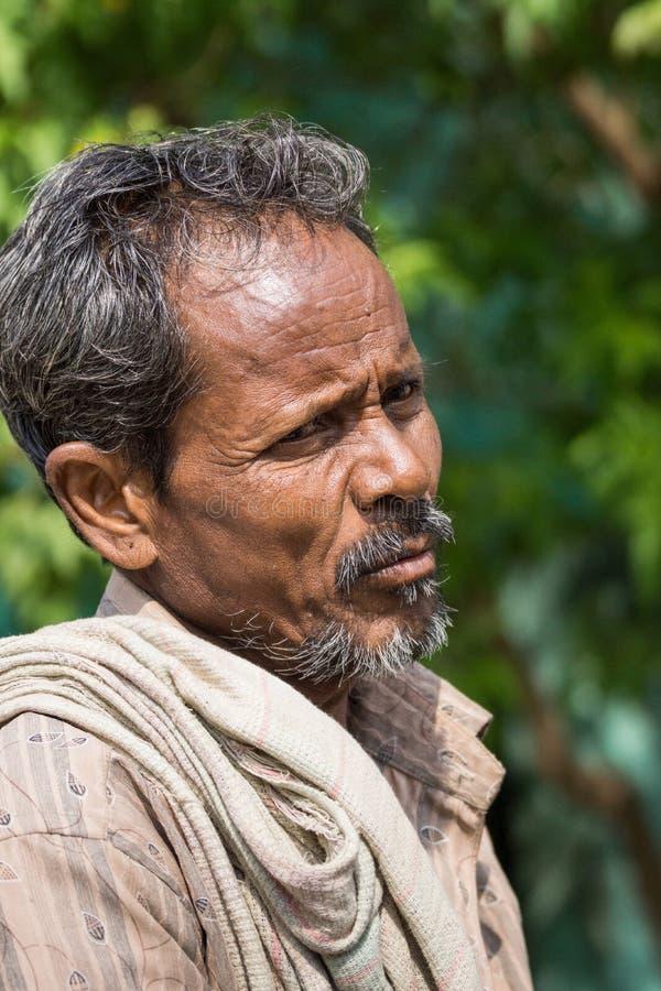 Retrato de farmen en Karattupatti, Tamil Nadu imágenes de archivo libres de regalías