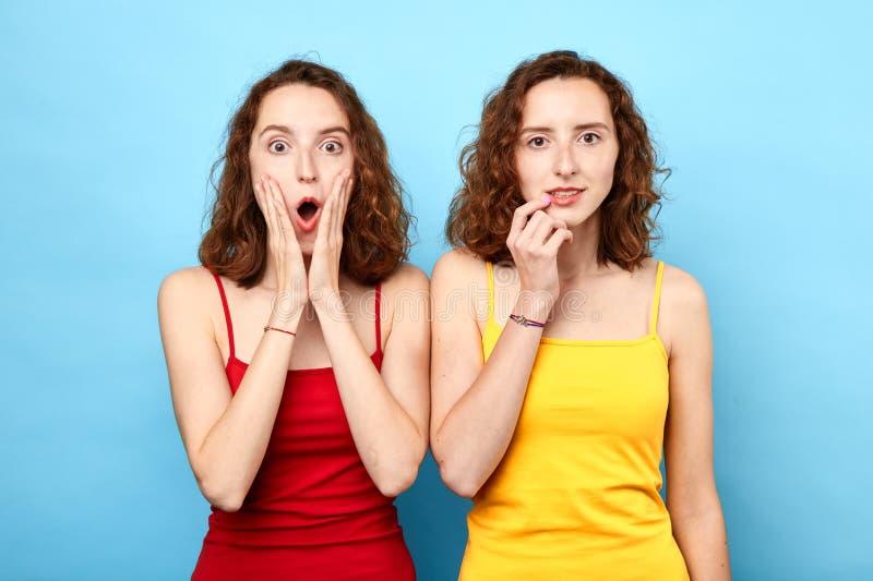 Retrato de hermanas gemelas hermosas en las camisetas rojas y amarillas que muestran emociones fotografía de archivo libre de regalías