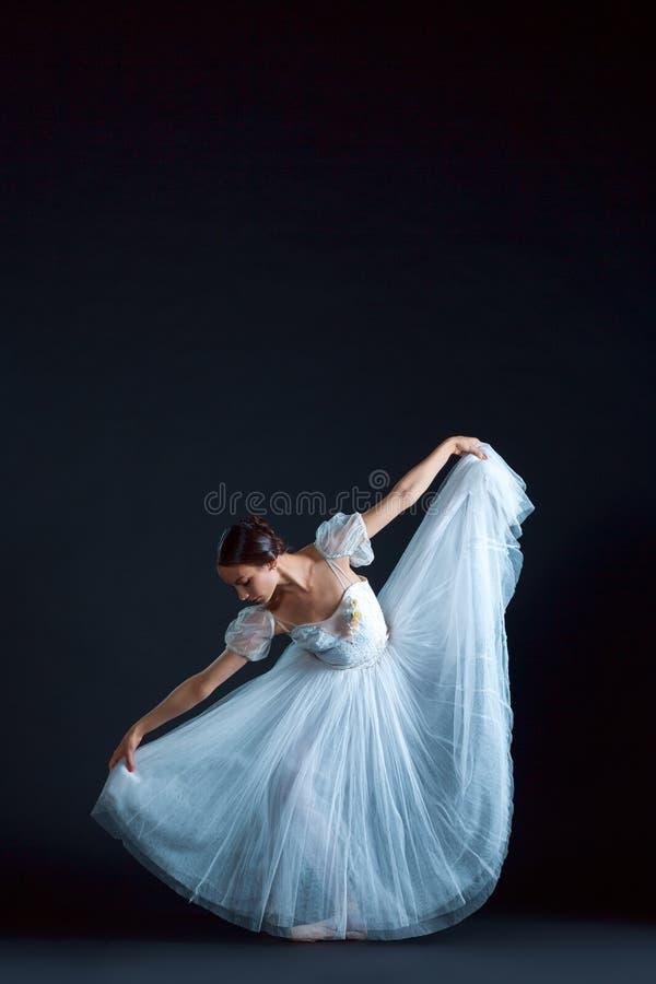 Retrato de la bailarina clásica en el vestido blanco en fondo negro imagen de archivo libre de regalías