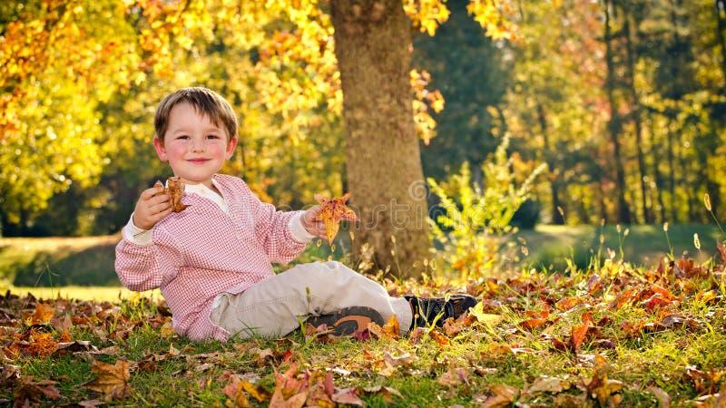 Retrato de la caída o del otoño de los jóvenes, muchacho del preschooler fotografía de archivo