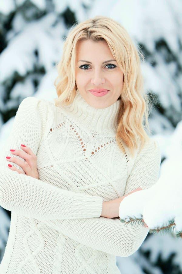 Retrato de la chica joven bonita en invierno imagen de archivo libre de regalías